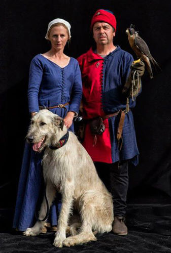A medieval falconry display