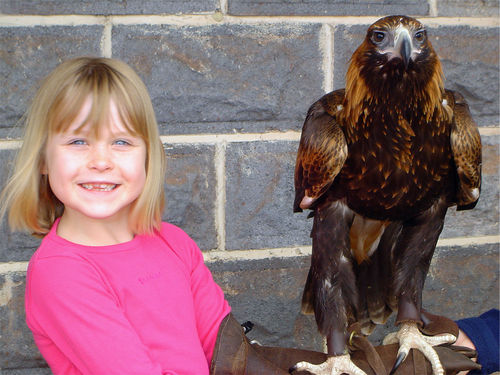Holding an eagle