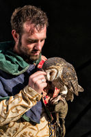 A masked owl and her handler