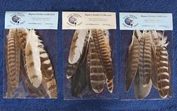 Feather pack - medium